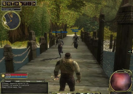 Dungeons and Dragons Online Screenshot 1